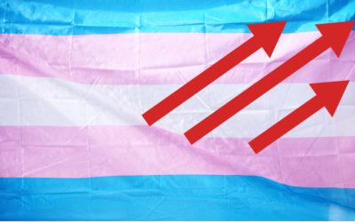 Journée du souvenir trans, combattre les préjugés et les discriminations avec les droits!
