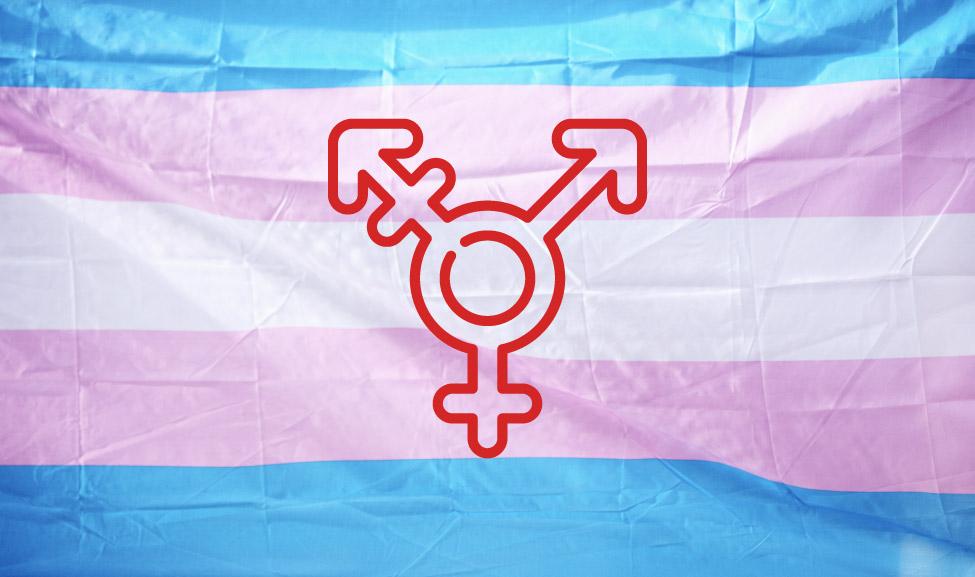Journée de la visibilité trans : dans tous les domaines intégrer les personnes trans et lutter contre les discriminations